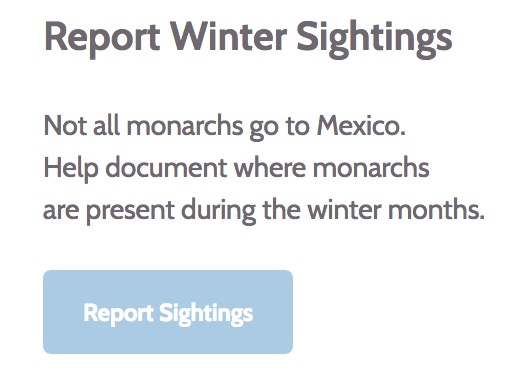 Report Your Monarch Sightings