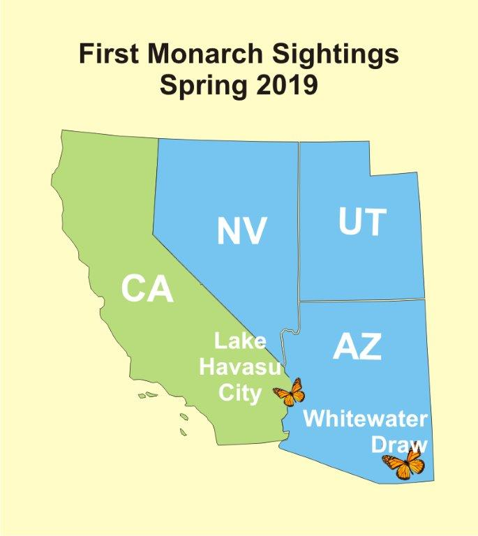 A Few Early Spring Sightings (03/25/2019)