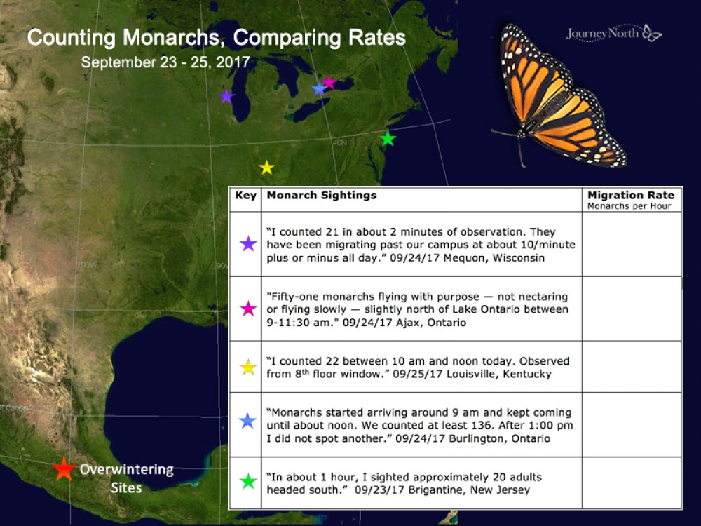 Map of Monarch Butterfly Peak Migration Sightings