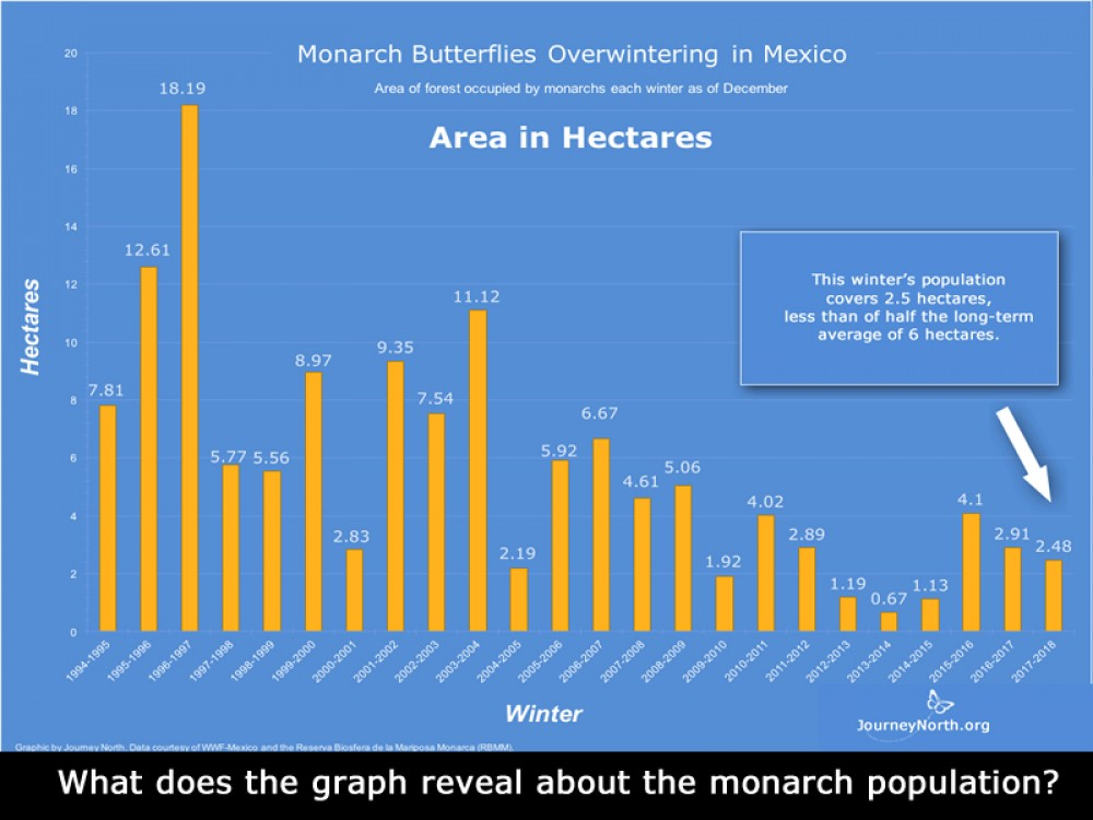Graph: Compare Monarch Butterfly Winter Population Size
