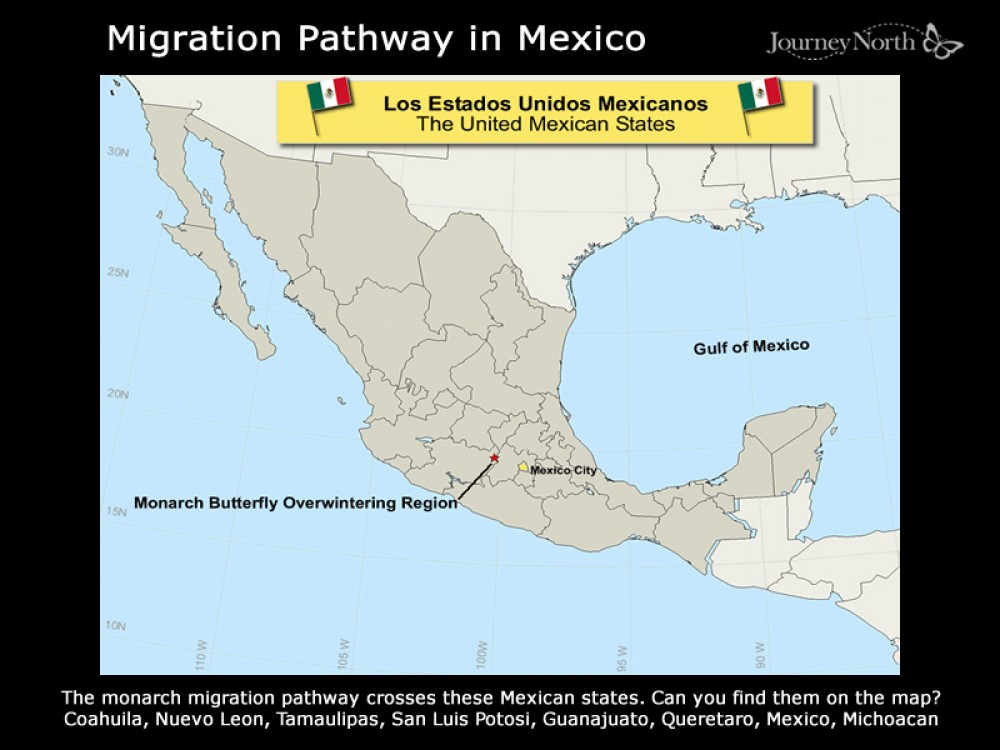 Mexican States on the Monarch Migration Pathway