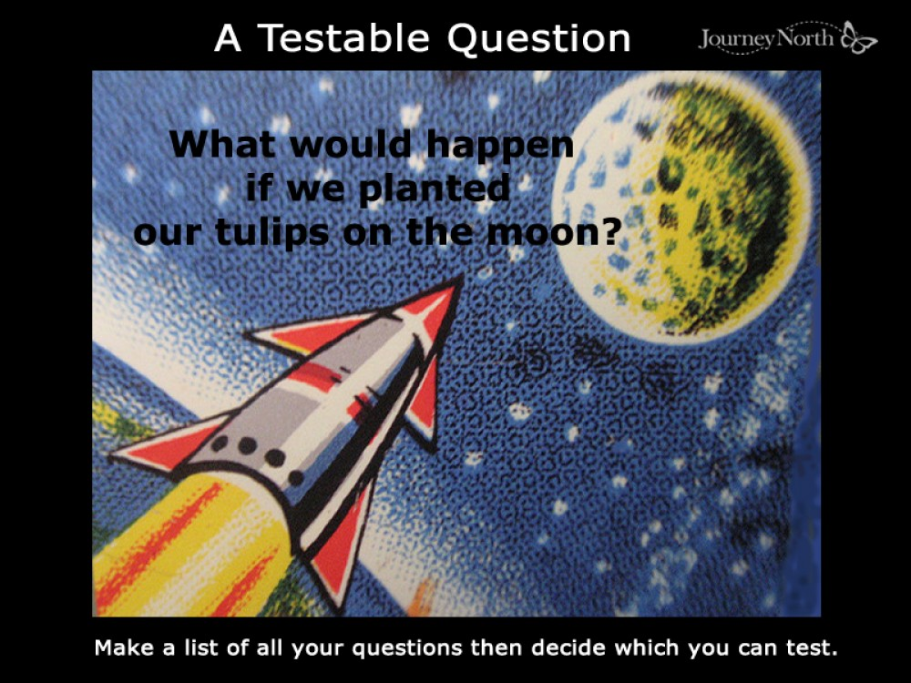 What's a Testable Question?