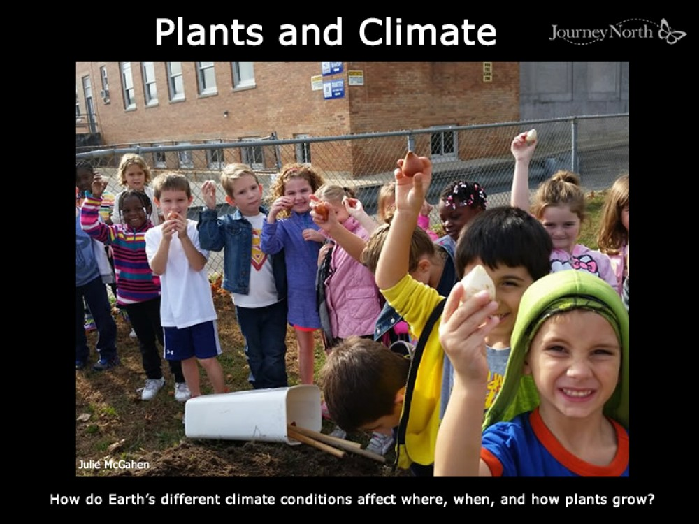 Journal: Plants and Climate.