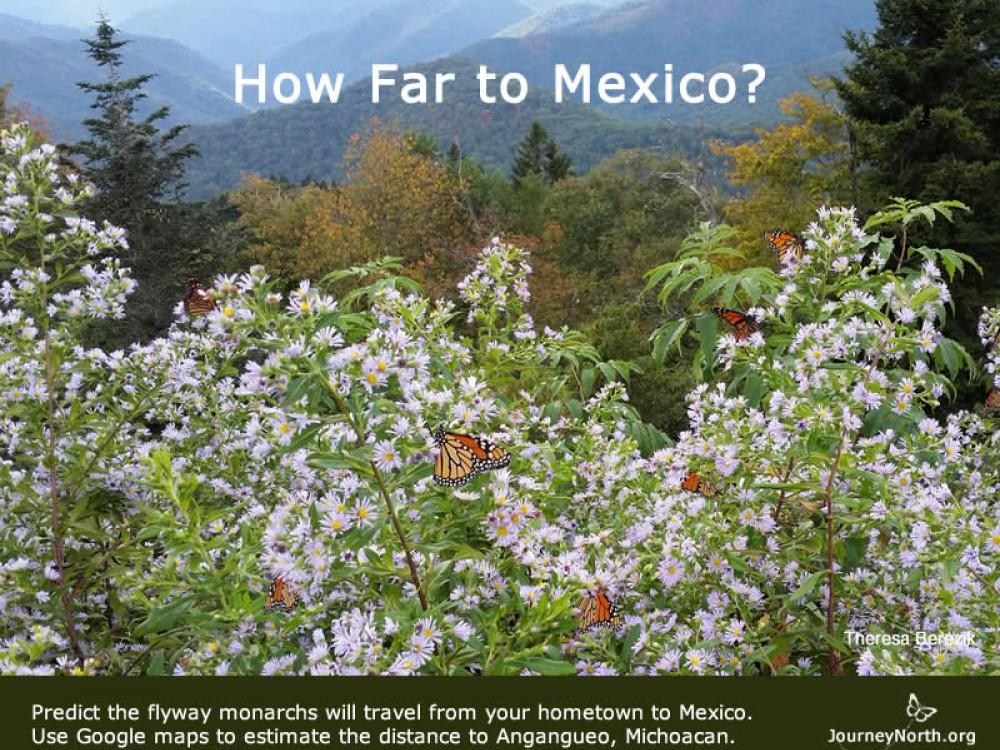 Journal: How far to Mexico?