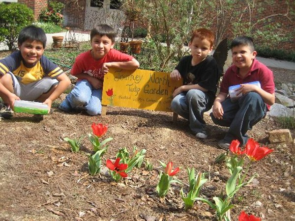 People track the arrival of spring by planting gardens as part of an international experiment.