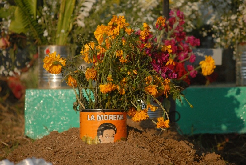 The bright orange cempasúchil (marigold) is the traditional flower of Dia de los Muertos. People say the color and fragrance guide the spirits home.