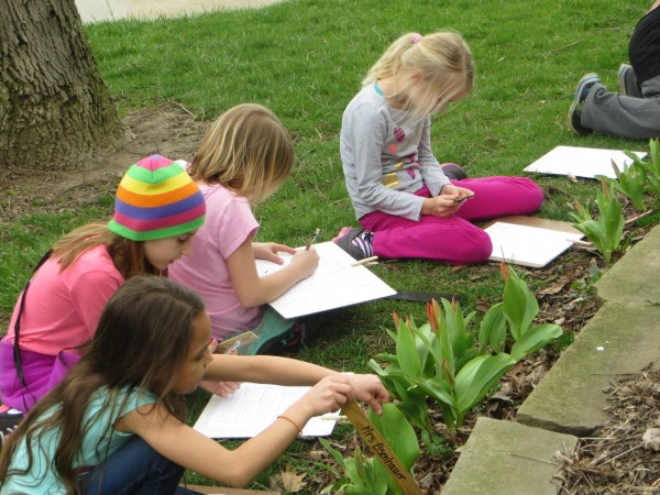 Photo of students observing flowering tulips