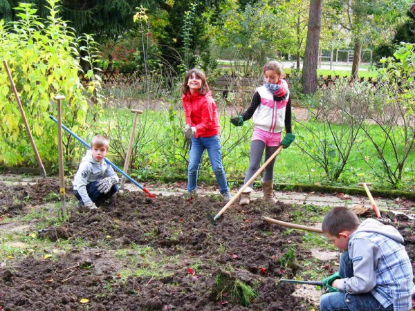 Students of  Elementary School Gablenz in Chemnitz, Germany planting tulip bulbs