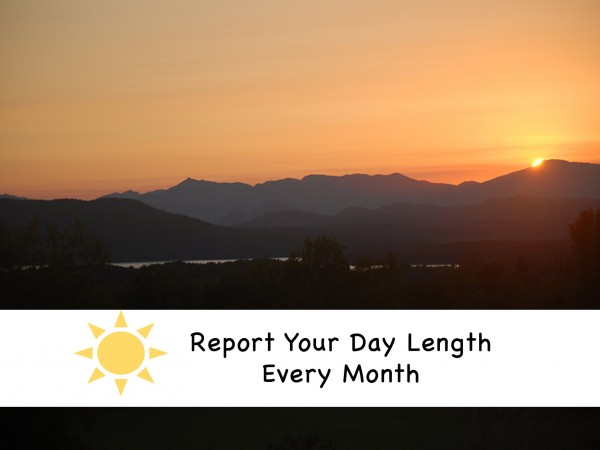 Report Your Daylight