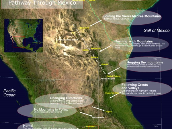 Map: Monarch Butterfly Migration Pathway in Mexico
