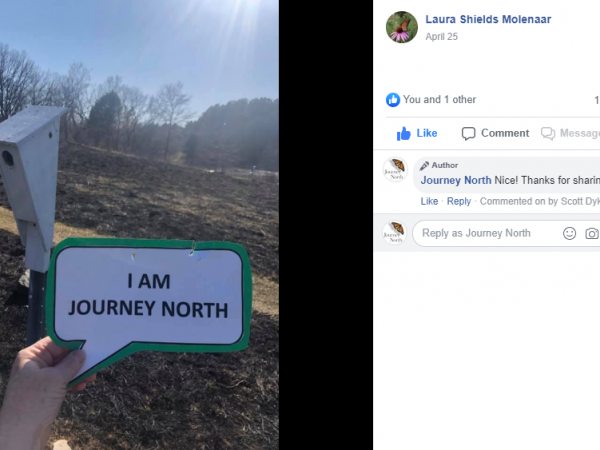 I am Journey North Facebook submission.