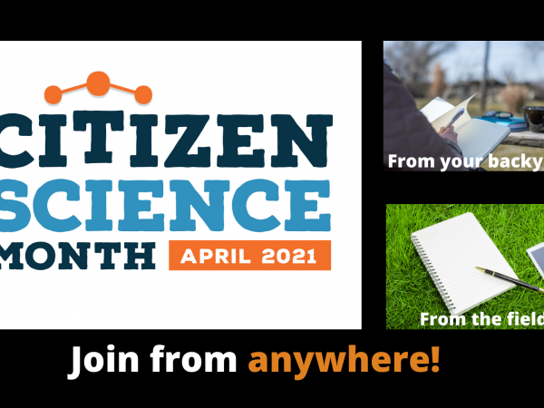 Citizen Science Month with Journey North
